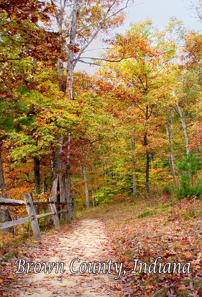BC-409 Hiking Trail in Fall