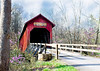 BC-223 Bean Blossom Bridge in Spring