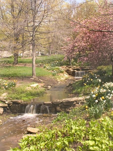 BC-308 Indiana Spring (Indiana University)