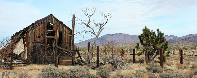 Old Cabin at Joshua Tree