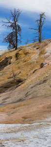 Mammoth Hot Springs Panoramic