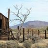 Old Cabin at Joshua Tree