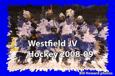 WHS JV hockey 2008-09