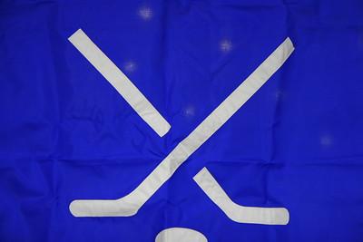 WHS hockey 2008-09 A