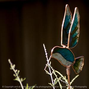 015-ornament-ankeny-24jun16-09x09-006-2587