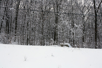 Photo's from Rockland & Orange County NY Winter storm Feb. 2010