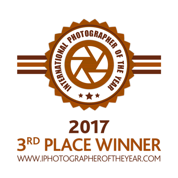 IPOTY 2017 3rd Place Winner for Fine Art: Photomanipulation      BUY IPOTY 2017 3rd Place Winner for Fine Art: Photomanipulation