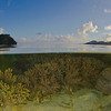 Split Scene, Fiji