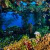 Companionway, Truk Lagoon