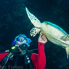 Naughty Turtle, Papua New Giunea