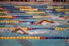 Swim012018_520