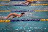 Swim012018_522