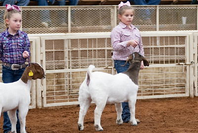 20190104_wilburton_goats_showmanship-and-does024