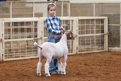 20190104_wilburton_goats_showmanship-and-does025