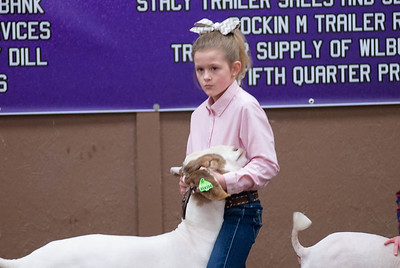 20190104_wilburton_goats_showmanship-and-does040