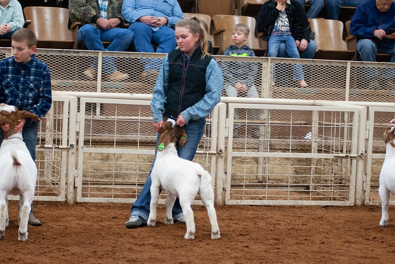 20190104_wilburton_goats_showmanship-and-does028