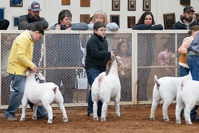 20190104_wilburton_goats_showmanship-and-does035