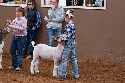 20190104_wilburton_goats_showmanship-and-does022