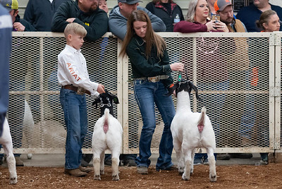 20190104_wilburton_goats_showmanship-and-does038