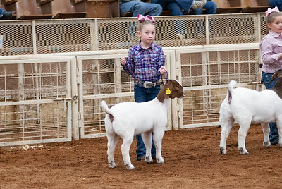 20190104_wilburton_goats_showmanship-and-does023