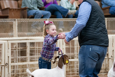 20190104_wilburton_goats_showmanship-and-does026