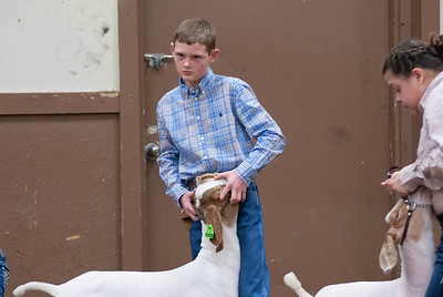 20190104_wilburton_goats_showmanship-and-does041