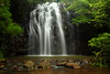 Waterfall, Atherton Tablelands Qld