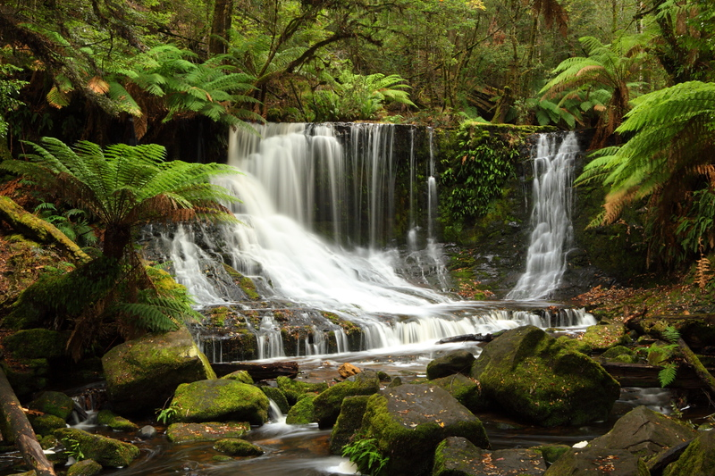 Horse-shoe falls at Mt Fields National Park, TAS. Loving the rivers, moss and tree ferns after living in dry WA for 5 years!