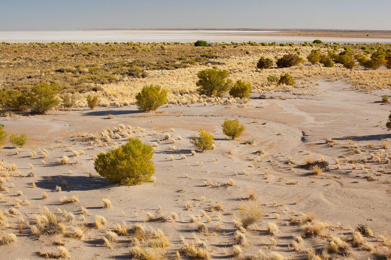 Lake Eyre shoreline, Halligan Bay (a later / different trip)