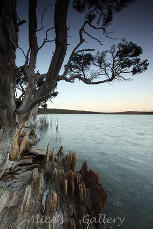 Fitzgerald River National Park (WA)