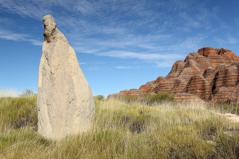 Big termite mound, spinifex, and bungles. Very cool.
