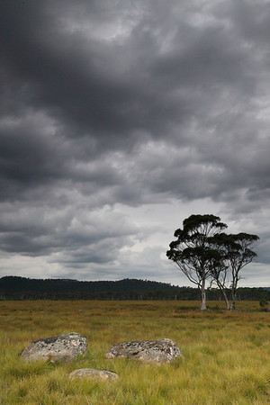 A dark and stormy evening at Lake St Clair region, TAS