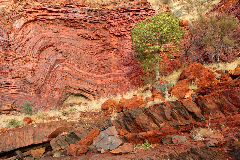 Bendy Banded Iron, Hamersley Goge