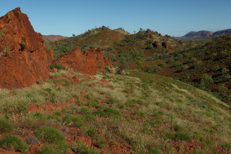 West Macdonnell National Park, W of Alice Springs in NT. We took a detour through here to get to the rock (Uluru), and I'm so glad we did! This area was simply amazing.Red cliffs, lots of wildlife, gorges, frogs, all things to keep me happy.