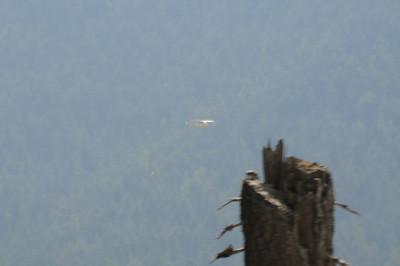 Mt Hood Gnarl Fire_0076