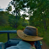 On a safari in the jungles of Ranthambhore national park