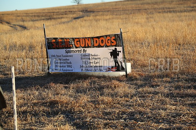 S E K  GUN DOGS 2015_0124 (2)