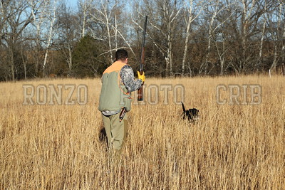 S E K  GUN DOGS 2015_0124 (30)