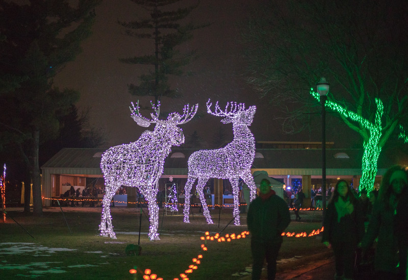 Detroit Zoo Christmas Lights.Wild Lights At The Zoo 2017 Jrc Oakland