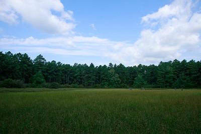 Intermittent pond