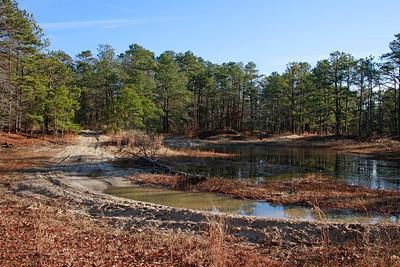 ATV destruction to sensitive habitat