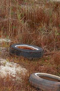 Garbage in intermittent pond habitat