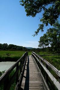 Scenes along the Pochuck Creek boardwalk