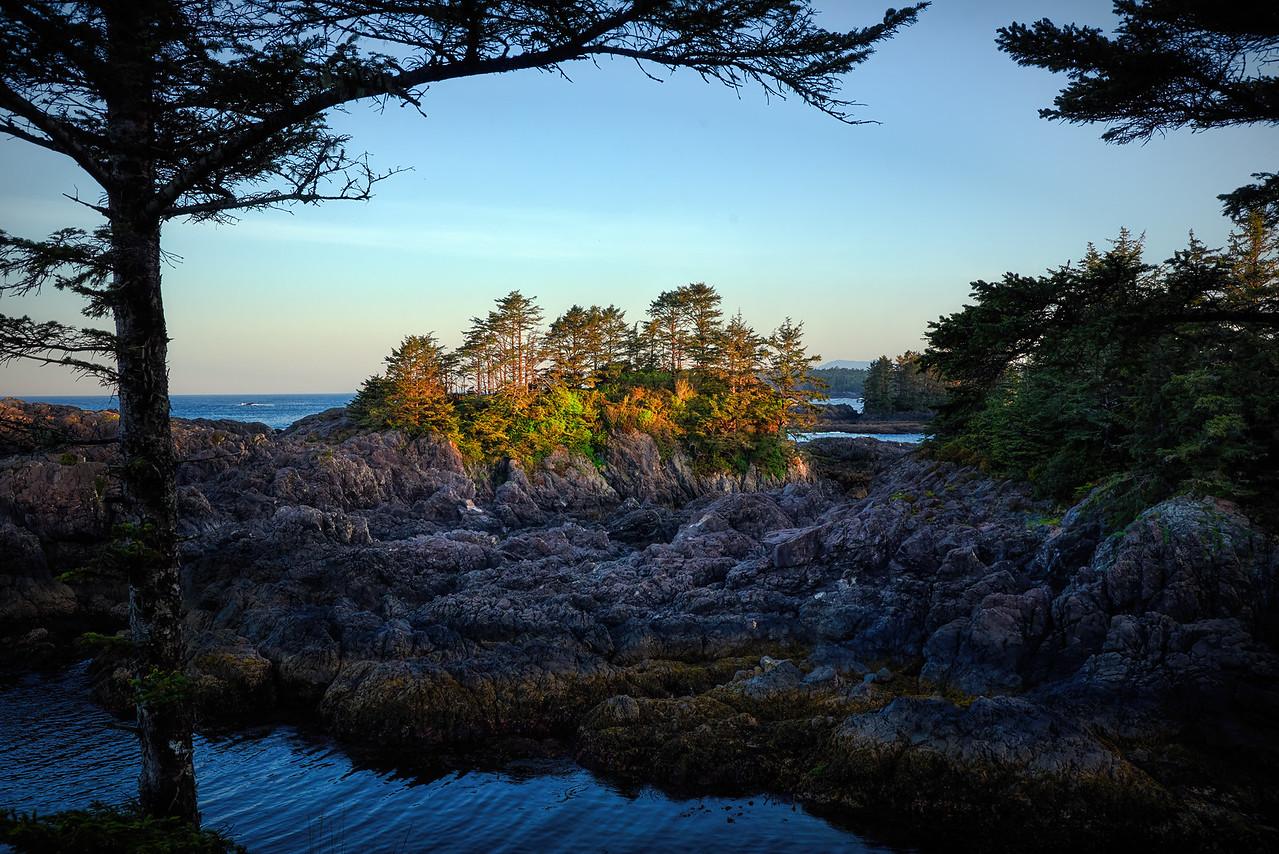 IMAGE: https://photos.smugmug.com/Wild-Pacific-TrailPacific-Rim/i-zwDbPZC/0/4eea31fa/X2/2018-05-14_06-20-21-X2.jpg