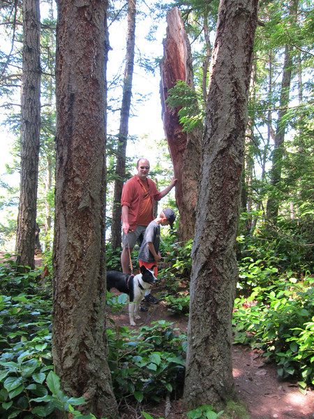 Nigel, Will, and Boomer on the trail to Obstruction Pass...
