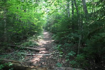 Wild River Trail