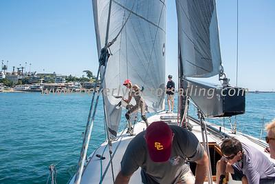 Wild Sailing Regatta 2019