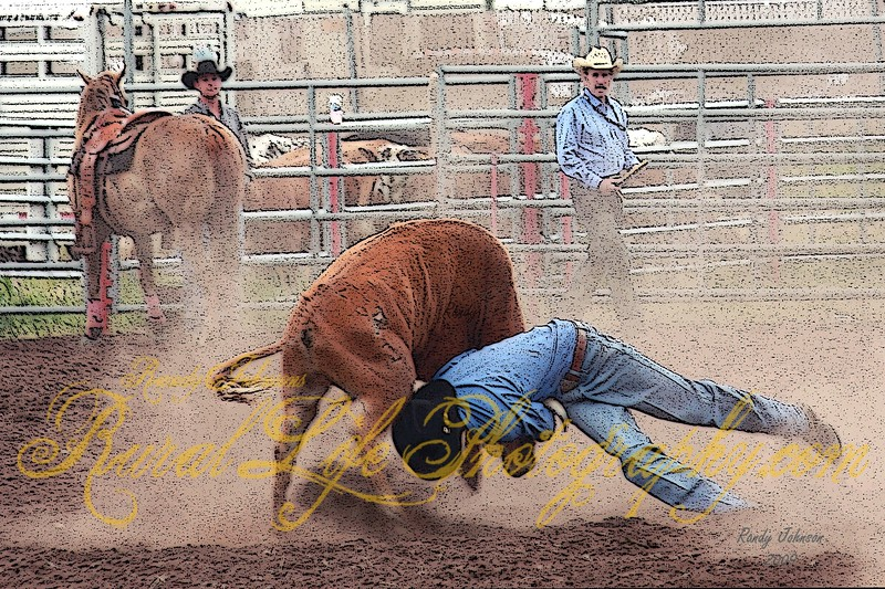 Bickleton Rodeo