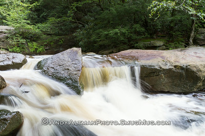 Pendleton Creek #1
