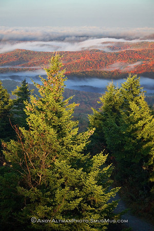 Spruce Knob Sunrise #1